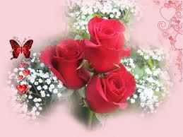 love & rose